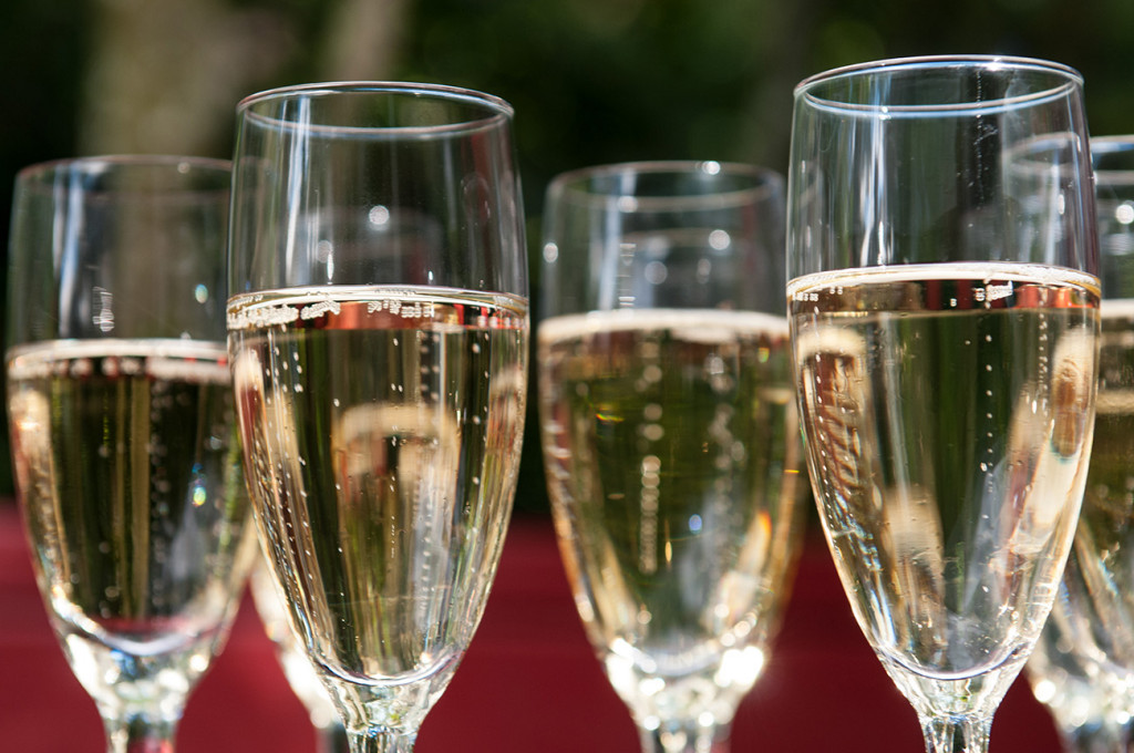 Closeup of Champagne and bubbles in flutes Homosexual Home garden Wedding Auckland Photographer Anais Chaine