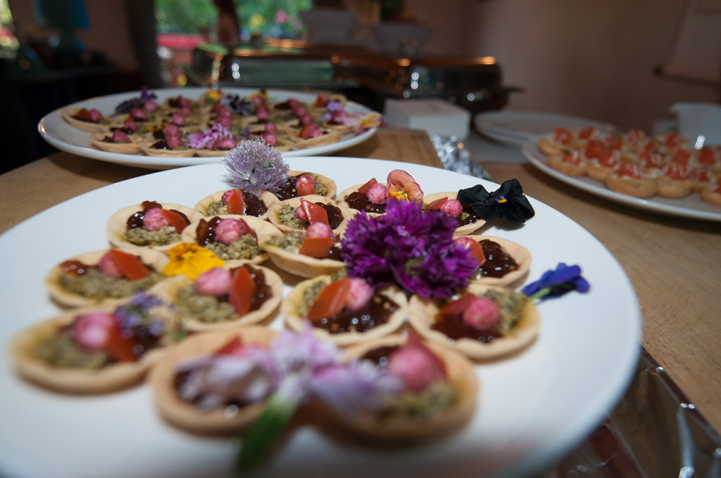 Colourful bitings at the wedding buffet Homosexual Home garden Wedding Auckland Photographer Anais Chaine