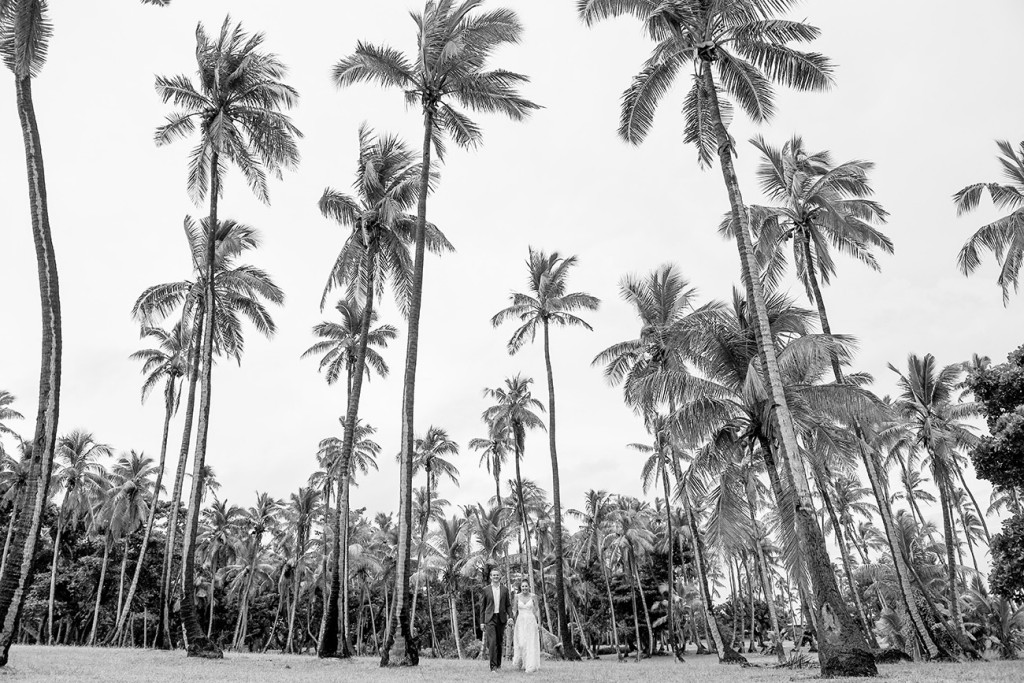 Black and white Stunning palm trees in Vomo Island Resort Fiji captured by fiji photographer Anais Chaine