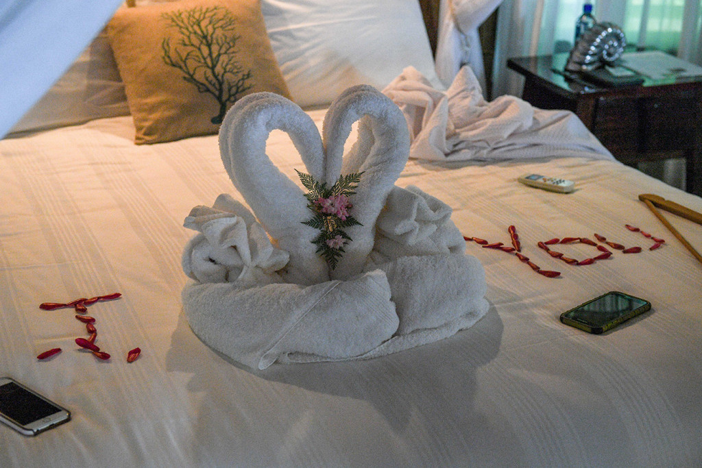 Swan on the bed, at Matangi island resort Fiji