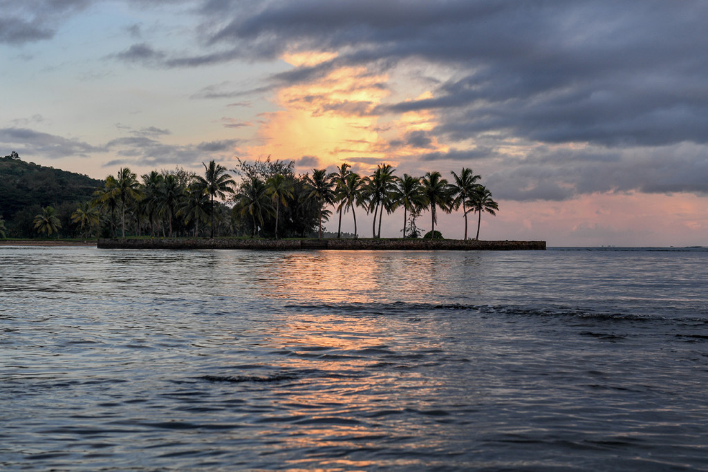 Sturdy palm trees sway against the breathtaking sunset at Naviti Fiji