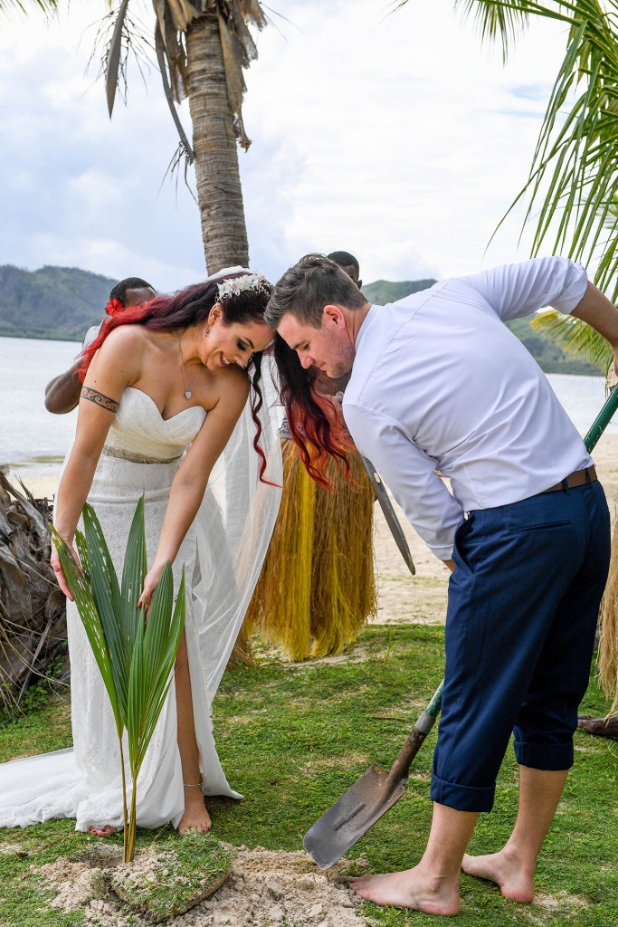The bride and groom plant a palm in memory of their wedding