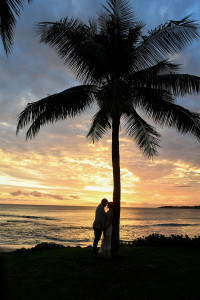 Silhouette kiss under a palm