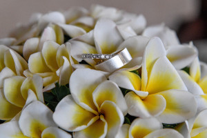 Diamond and silver rings by etsy in a bed of Frangipani Fiji flowers
