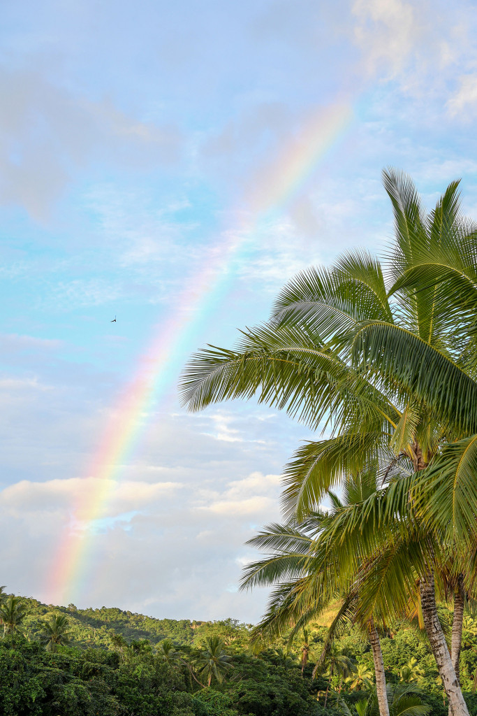 A rainbow paints the Fiji sky behind palm trees at Sunset