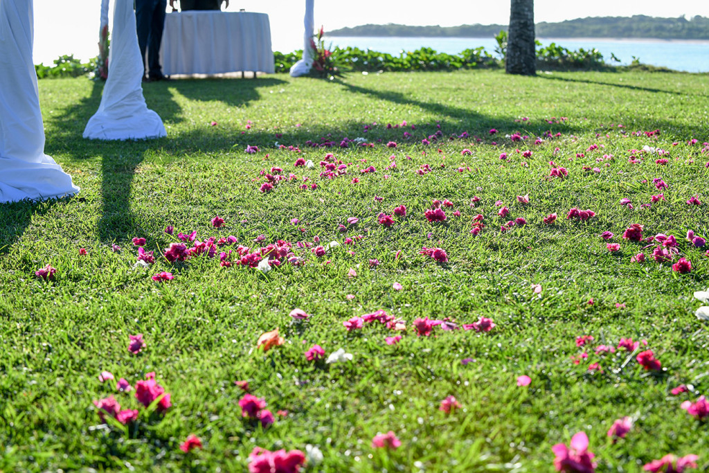 Pink Fiji flowers strewn down the aisle