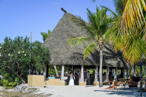 Palm thatched bar roof