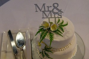 A simple, white two tier Wedding cake with Mr & Mrs topper