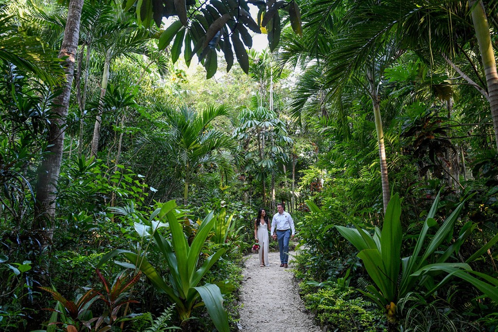 The newly-weds stroll through the tropical rain forest at Savasi Fiji