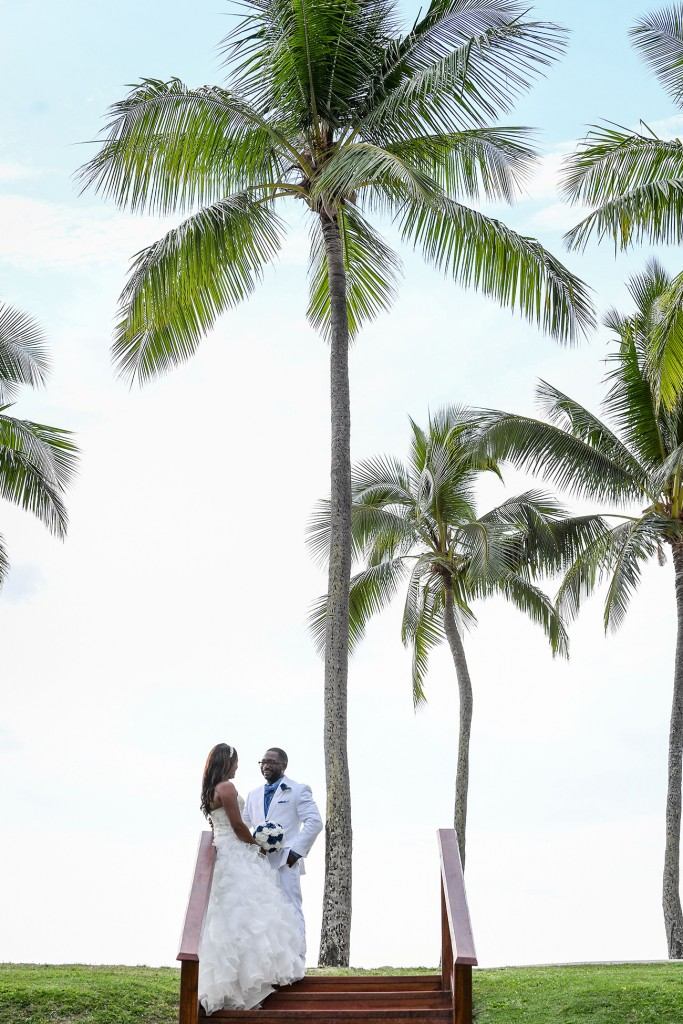 The newly married couple pose under a gigantic palm tree at the beach