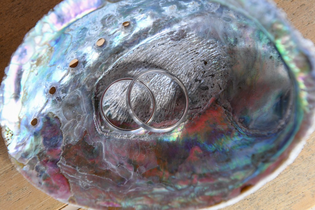 The rings kept in a colourful paua shell