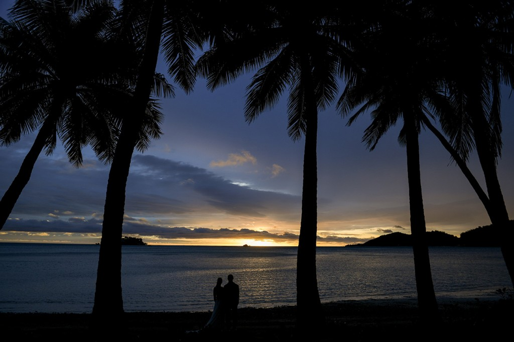 A silhouette of the newlyweds under towering palm trees at sunset