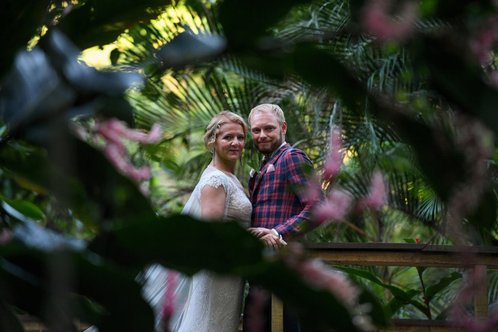 A look at the loving couple through a love frond